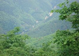 八ヶ峰頂上から見た旅行村