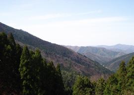 八ヶ峰登山道