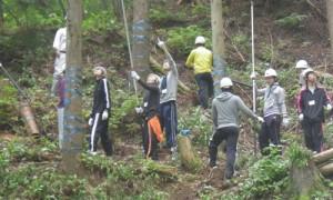 林業体験1