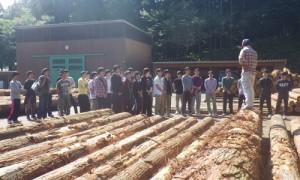 林業体験3